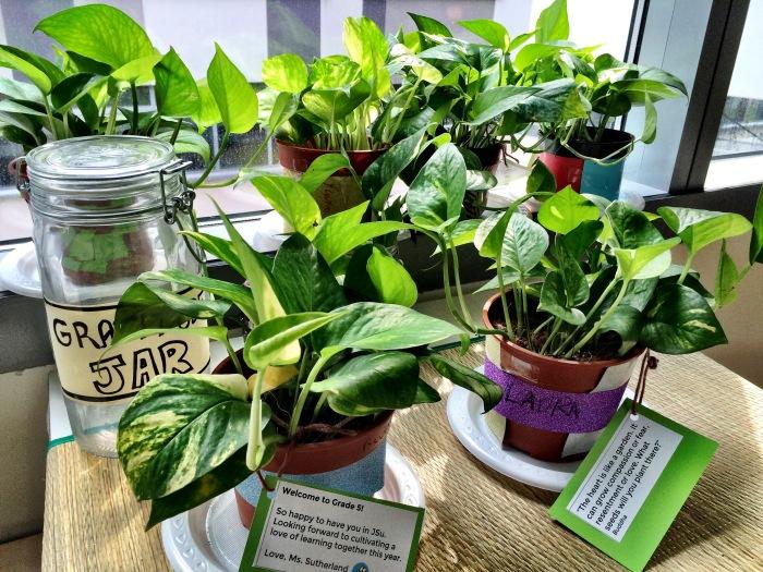 Plants4Kids